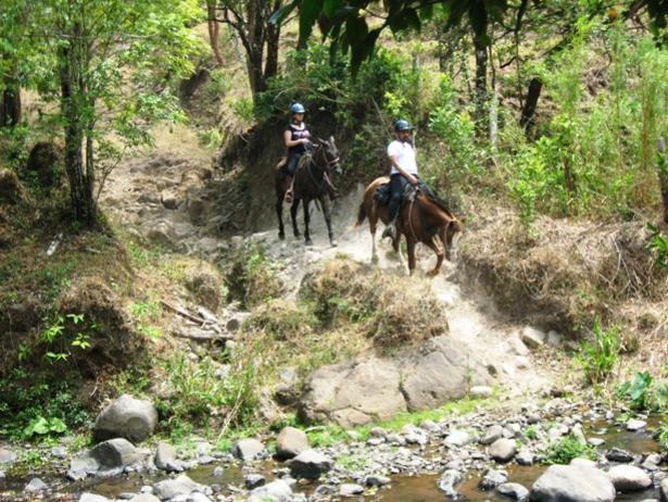 Costa Rica Horse Tours