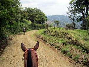 Along the back roads Montevere Costa Rica