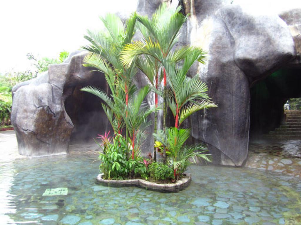 Costa Rica Baldi Hot Springs