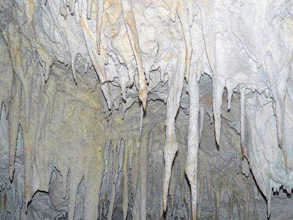 Barra Honda Caves