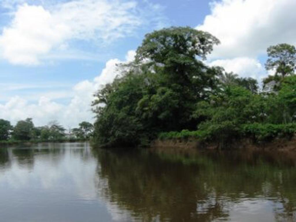 Lovely Cano Negro Costa Rica