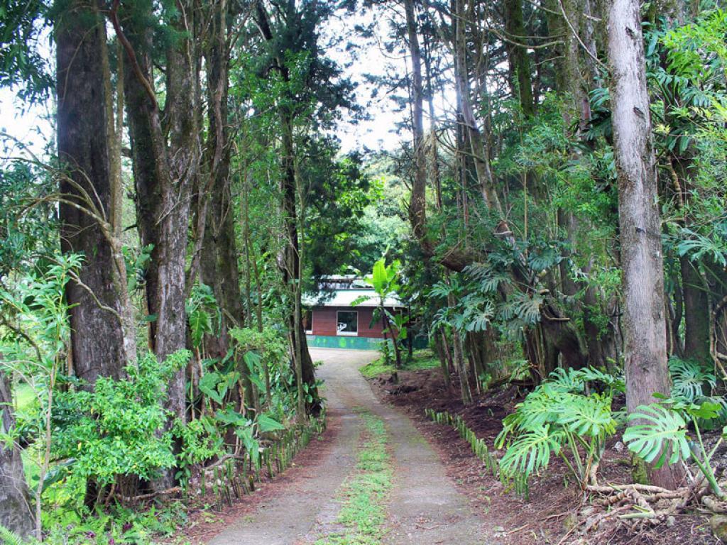 Cabanas Los Pinos Costa Rica