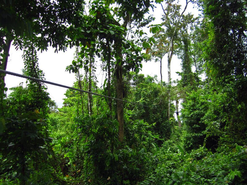Cable Vista Arenal Canopy