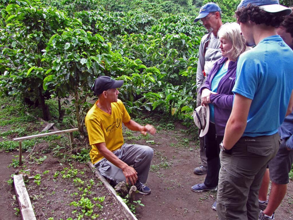 Monteverde Coffee Tour Costa Rica