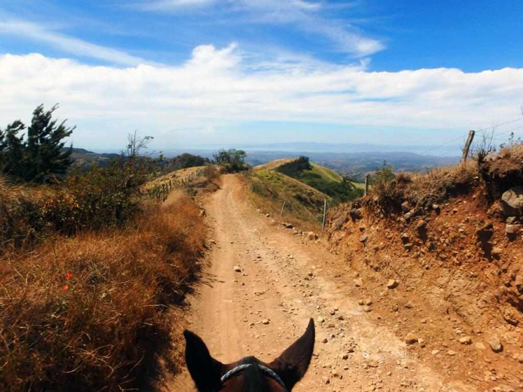 Campesino Trails and Gulf Views Horseback Riding Monteverde