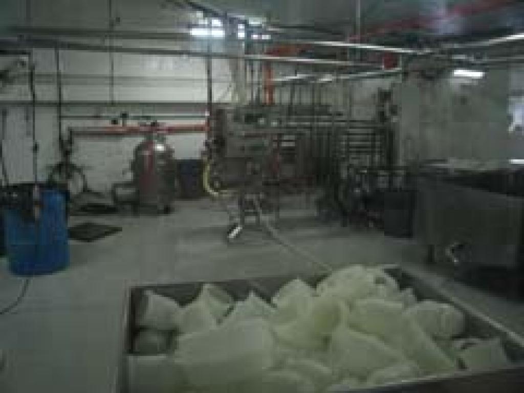Costa Rica Monteverde Cheese Factory