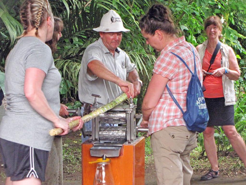 Nature Tours Costa Rica Trapiche