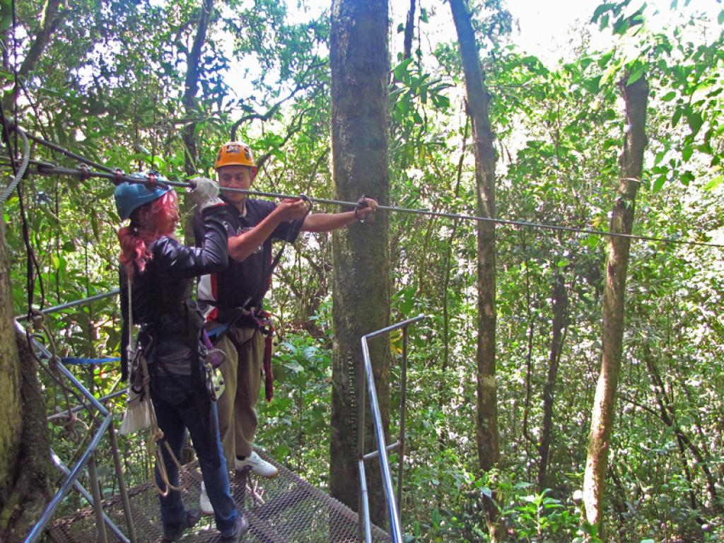 Extremo Canopy