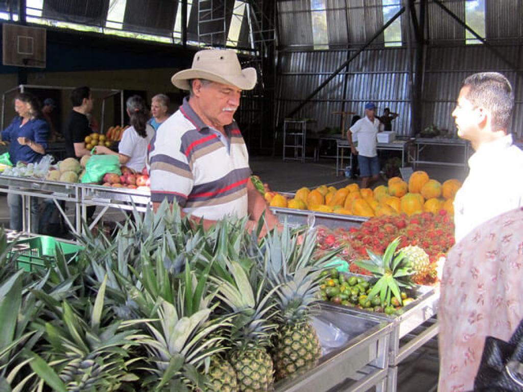Farmers Market Monteverde
