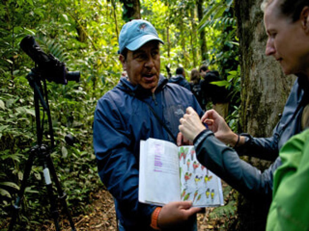 Guided Tours of Monteverde Reserve