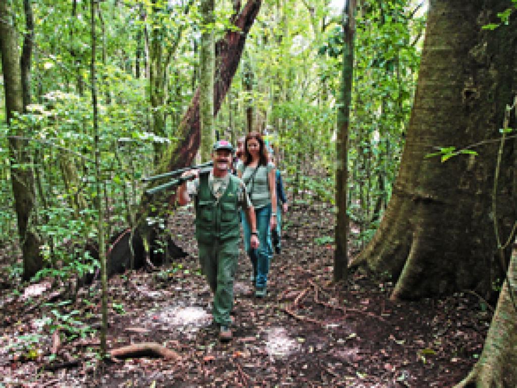 Monteverde Forest Curi Cancha