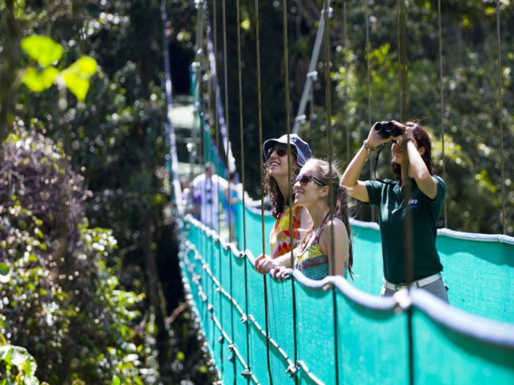 Hanging Bridges Arenal Skywalk