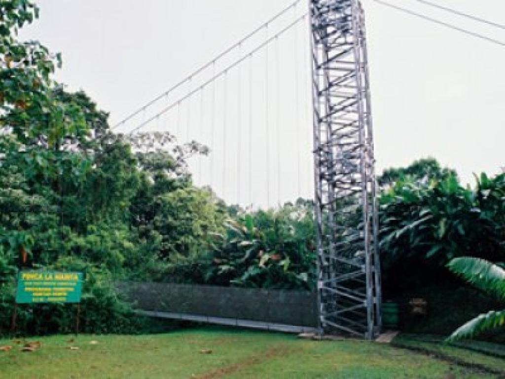 Arenal Tours Hanging Bridges