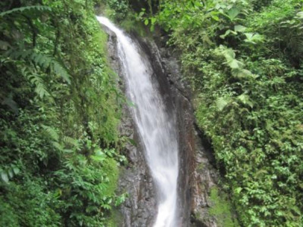 Waterfalls Hanging Bridges Arenal