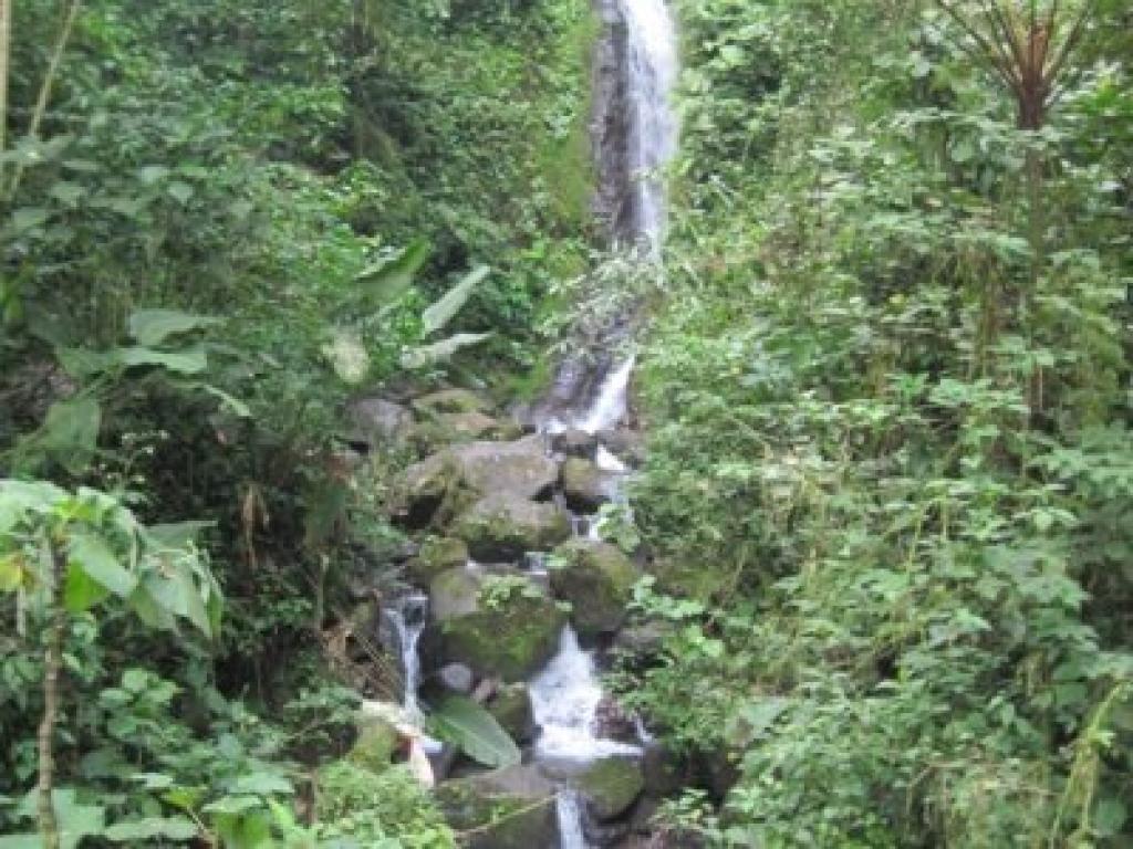 Hanging Bridges Waterfall