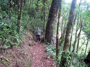 Trails Eden Falls Monteverde
