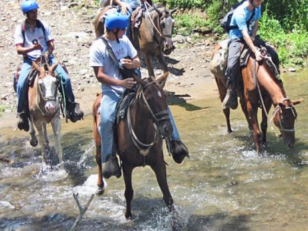 Horseback Riding Arenal