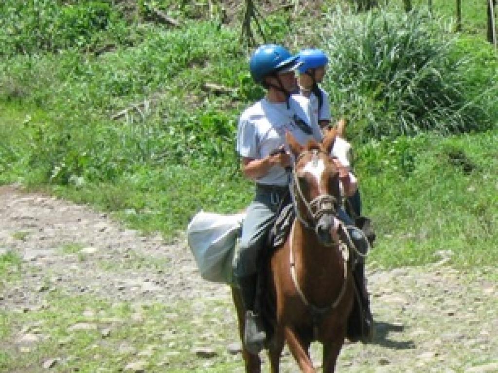 Horseback Riding Monteverde | Horseback Ride from Monteverde to Arenal Volcano Costa Rica