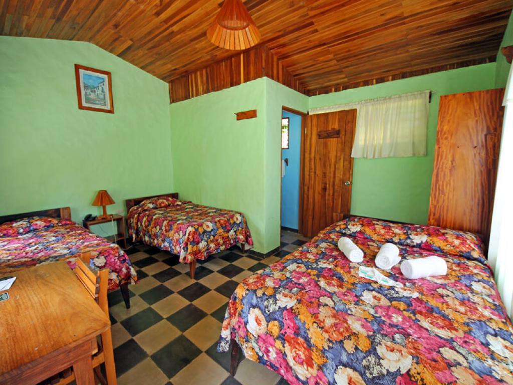 Hotel El Bosque Rooms 2