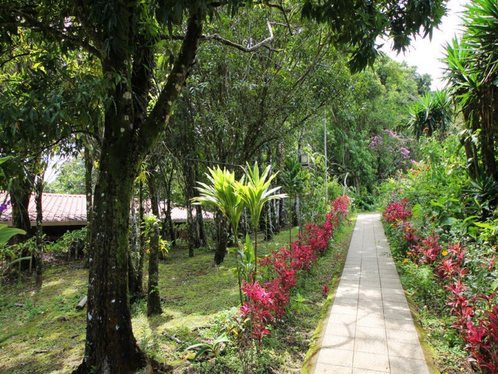 Hotel El Bosque Monteverde