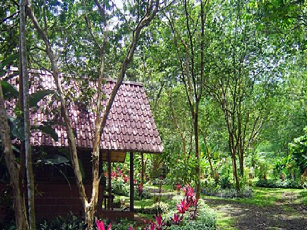 Arenal Oasis Eco Lodge Cabins