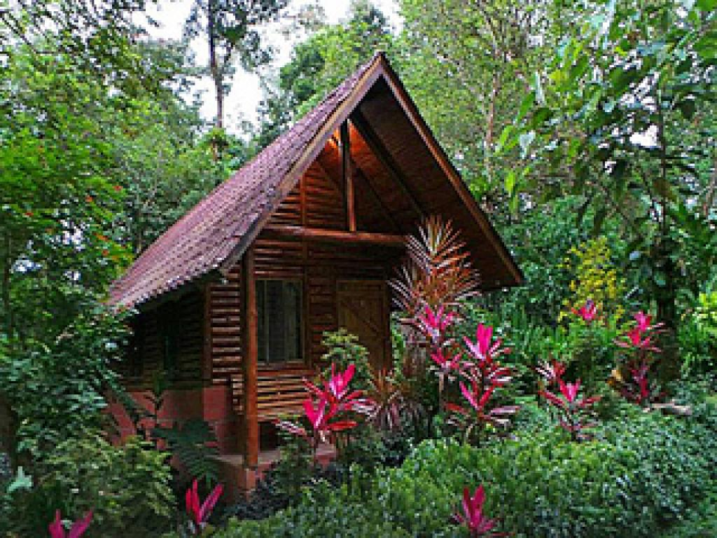 Hotel Arenal Oasis Eco Lodge