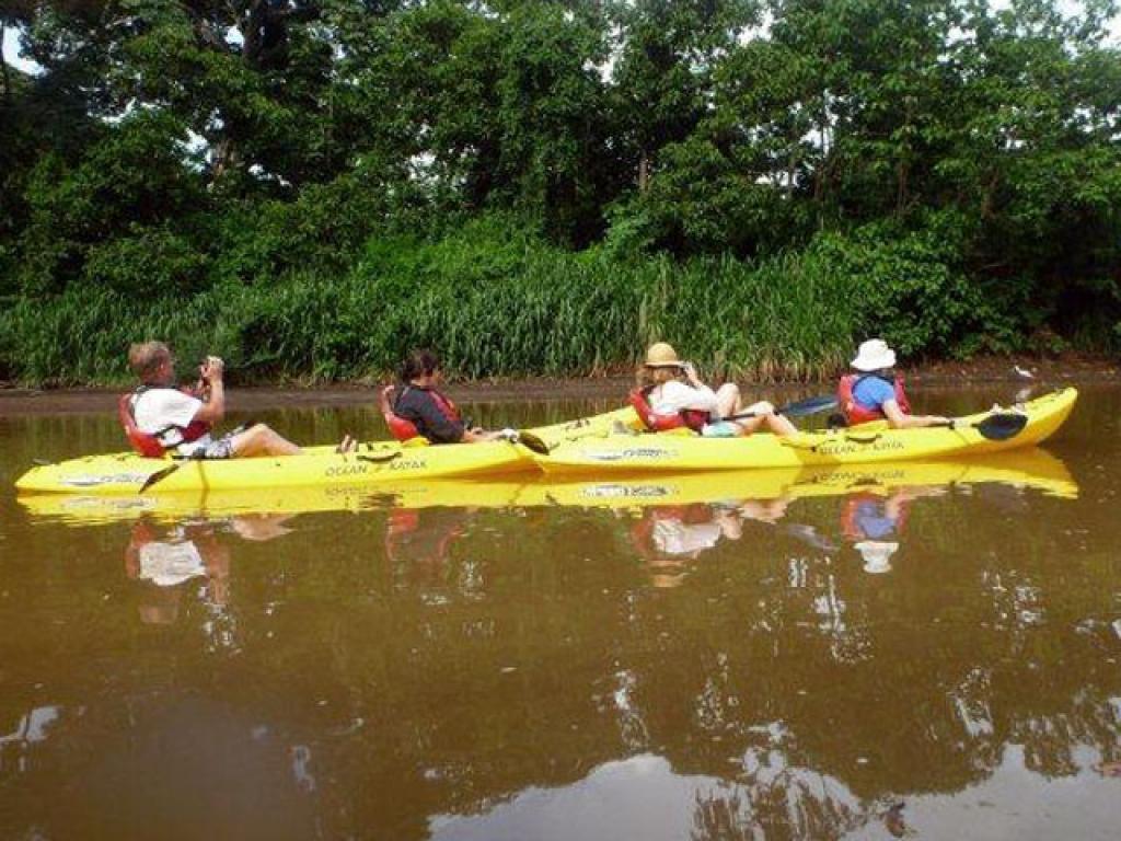 Kayaking Birding Costa Rica