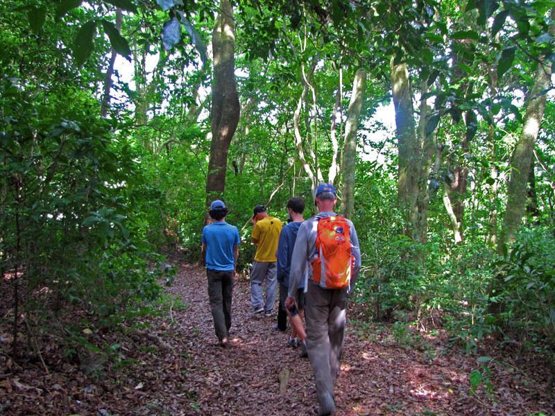 Forest Trails LIFE Monteverde Costa Rica