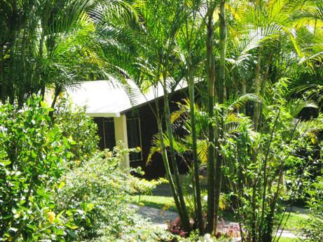 Cabanas Los Pinos Monteverde