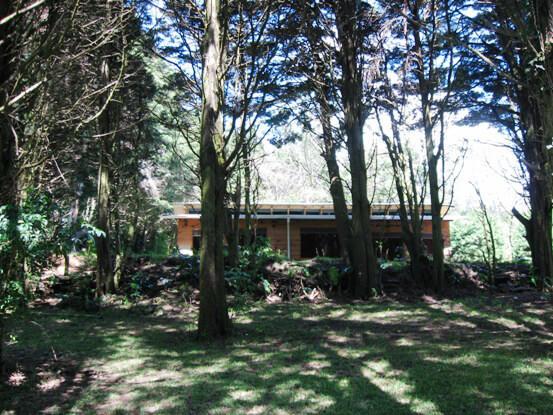 Monteverde Hotels Cabanas Los Pinos