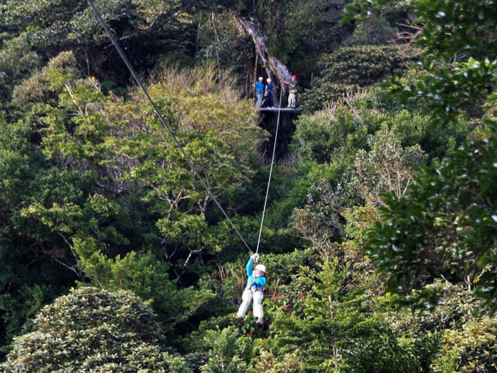Monteverde the Original Canopy Zipline Tour