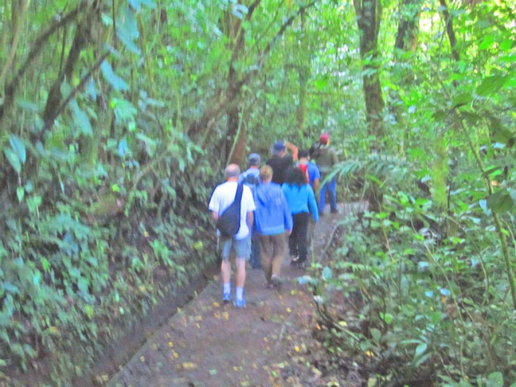 Guided Hikes in Monteverde Costa Rica