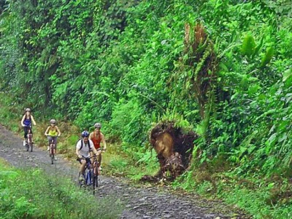Mountain Biking from the Arenal Volcano to Monteverde