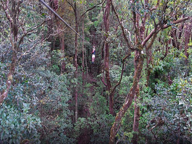Original Canopy Tour Monteverde