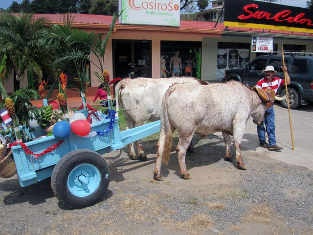 Ox Cart Monteverde Costa Rica