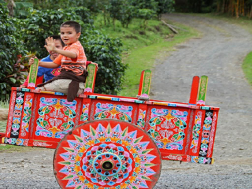 Fun OX Cart Ride
