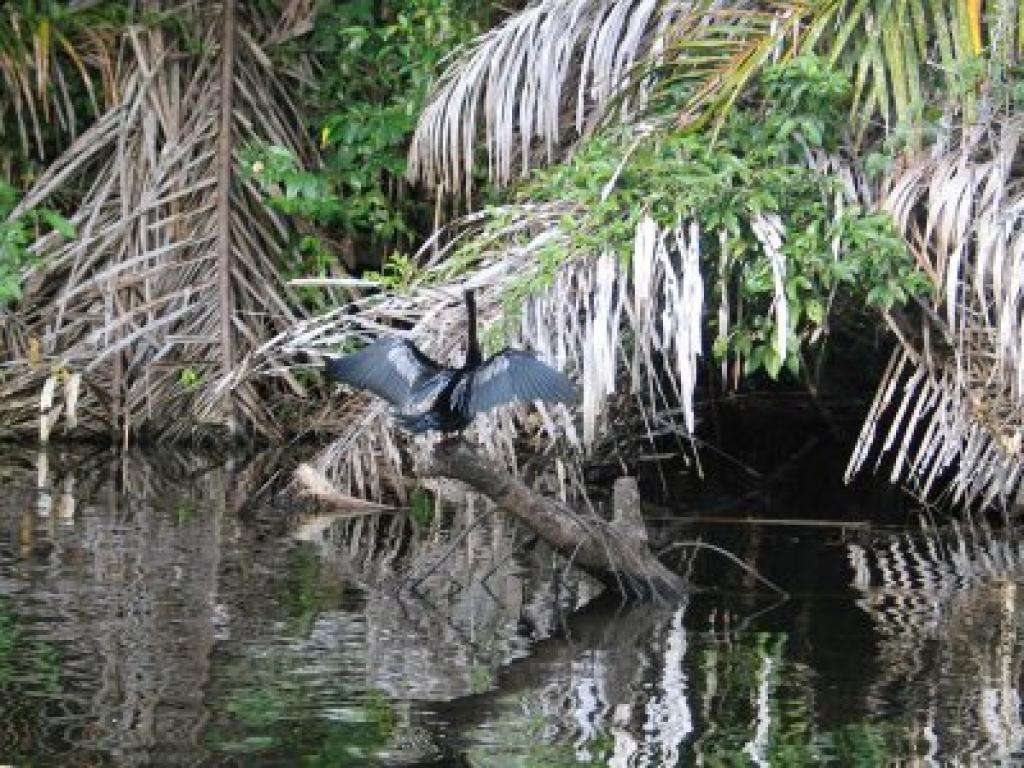 Peñas Blancas Safari Float Costa Rica