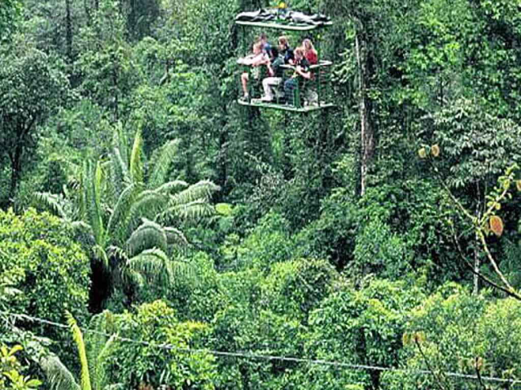 Rain Forest Aerial Tram Costa Rica