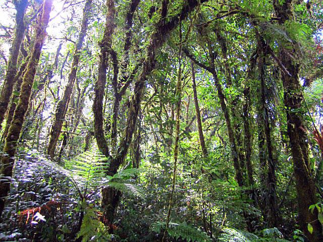 Reserve Santa Elena