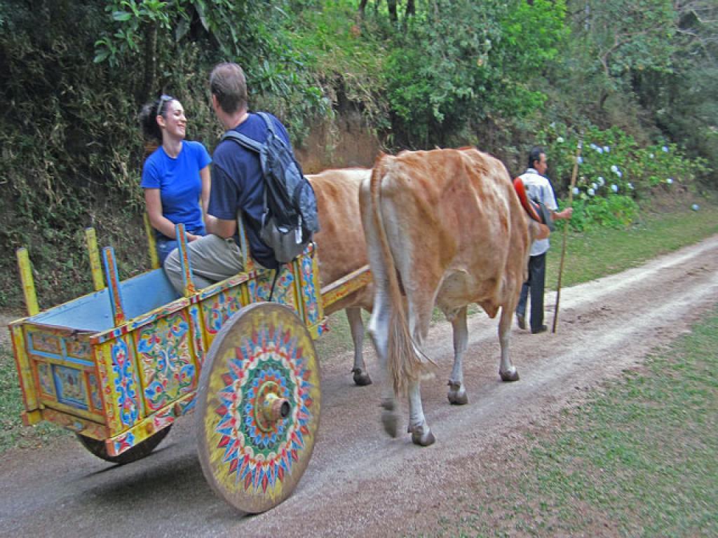 Monteverde El Trapiche Tour