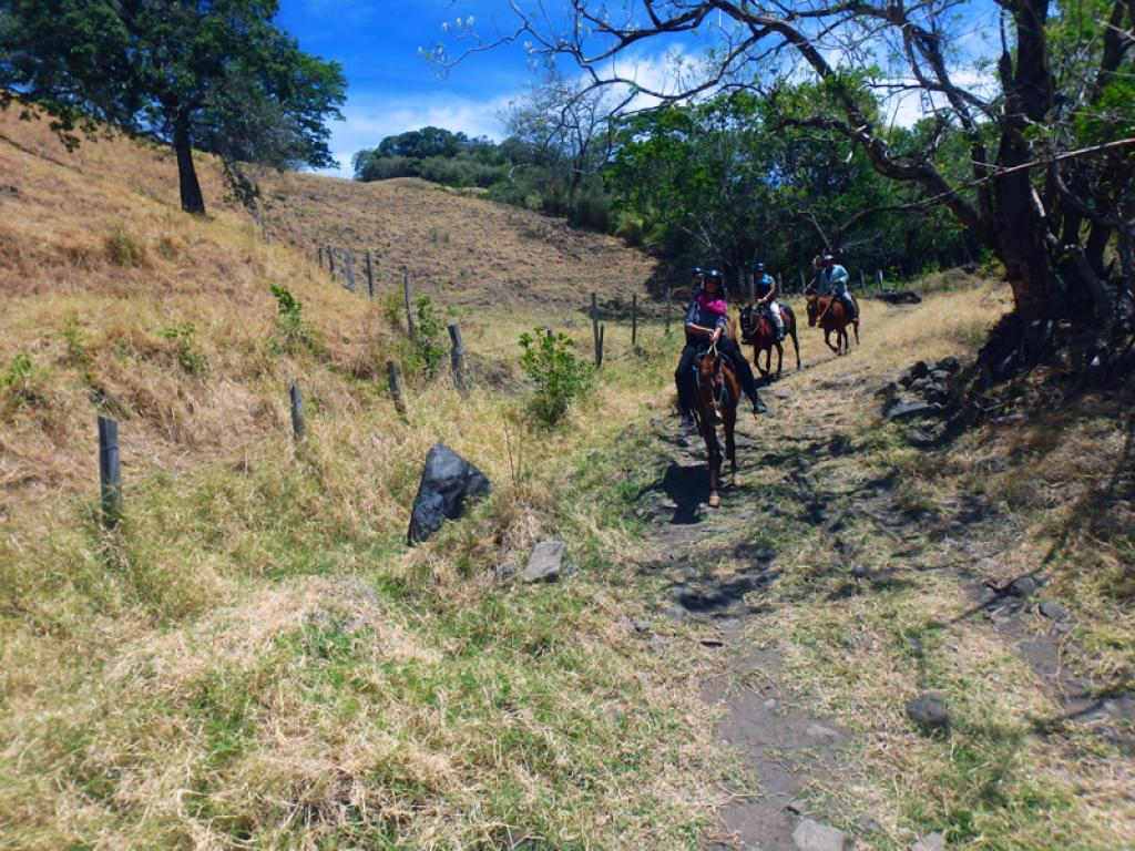 Horseback Riding Monteverde