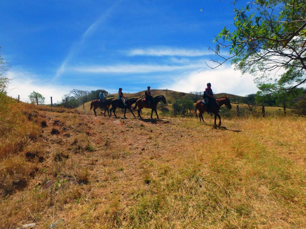 Riding Trails Monteverde Costa Rica