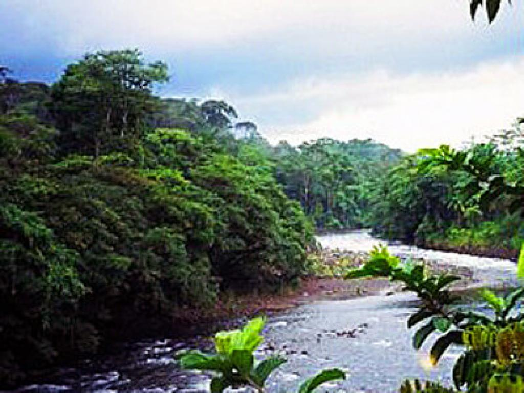 One Day Tour out of San Jose Costa Rica. 3-in-1 Rainforest Adventure
