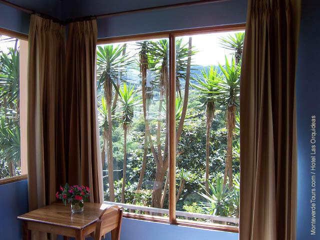 View from Hotel Las Orquideas