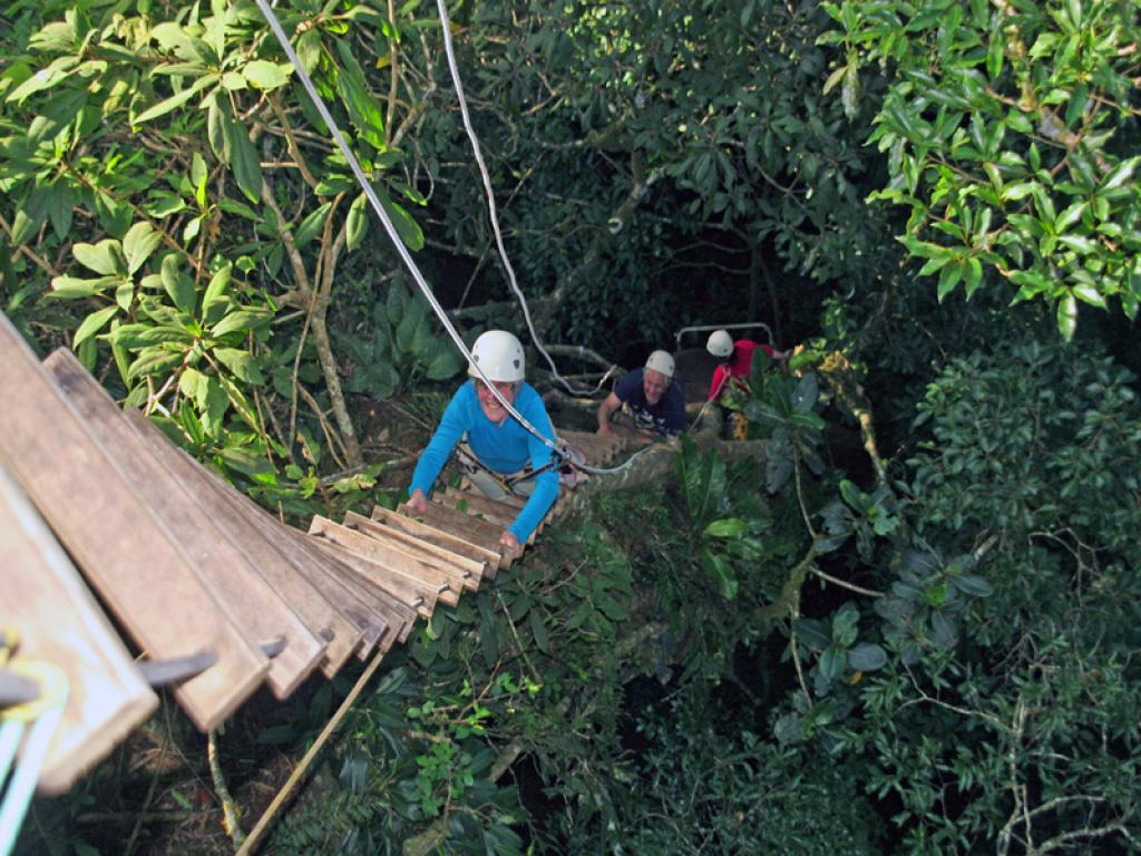 Rope Ladder Original Canopy Tour Monteverde