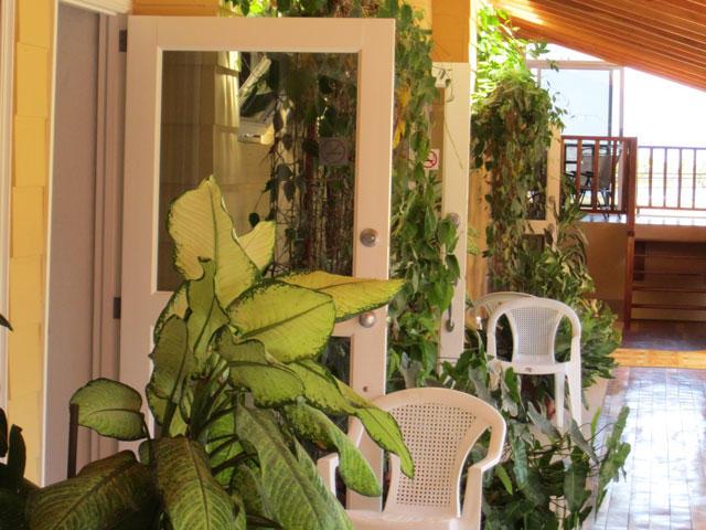 Costa Rica Samara Inn