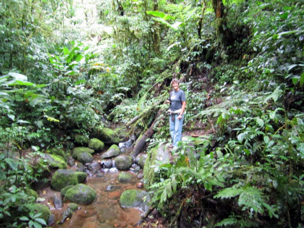 Santa Elena Park Costa Rica