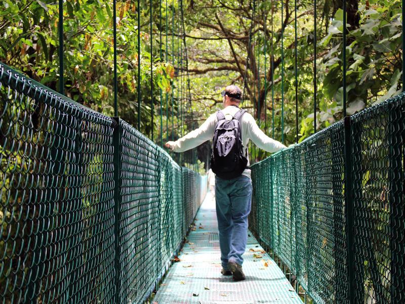 Hanging Bridges Selvatura