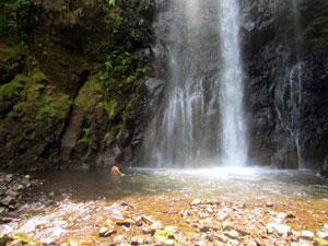 Eden Fall Monteverde Costa Rica