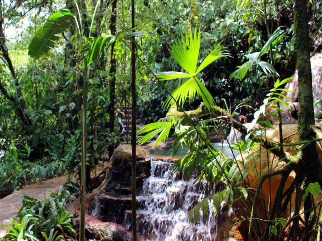 Natural Settings The Springs